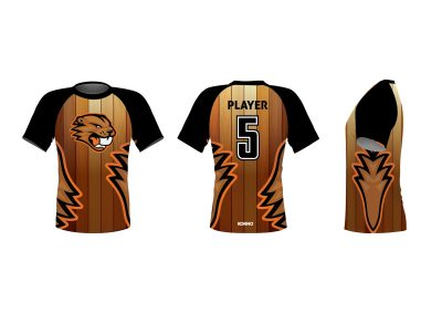 Dodgeball_Raglan_Shirt (1) Beavers Brood MockupV2